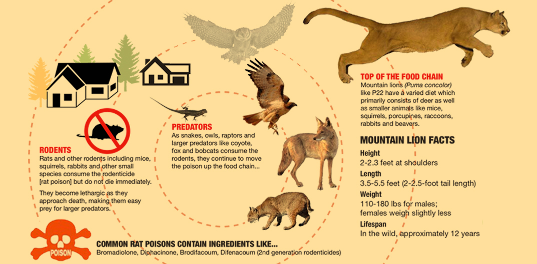 Let's eliminate the poisons that are KILLING OUR WILDLIFE!