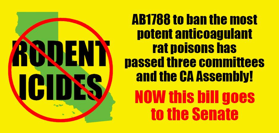 AB 1788 Information UPDATE