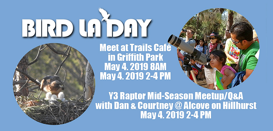 We're Celebrating Bird LA Day with two great events