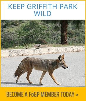 Keep Griffith Park Wild