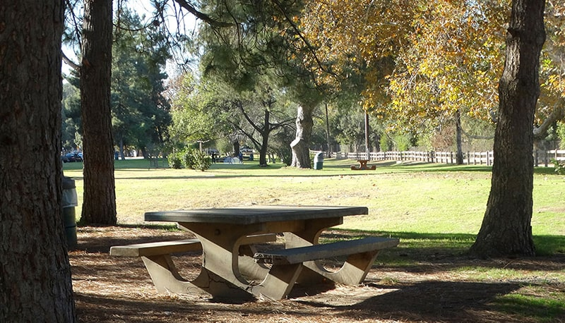picnic-areas
